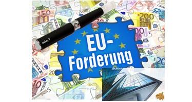 E-Zigarette: EU Unsinn