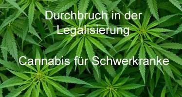 Cannabis für Schwerkranke