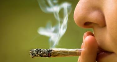 Einstiegsdroge Cannabis: Was ist dran an dem Argument?